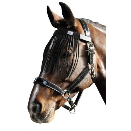 Mosquero Harry's Horse